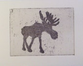 original etching of a moose, hand pulled