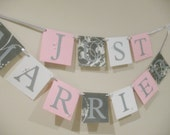 Just Married Wedding Banner - Pink and Silver
