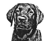Black Lab Puppy Print - 8x10