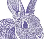 Bunny Rabbit - 5x7 Signed Art Print