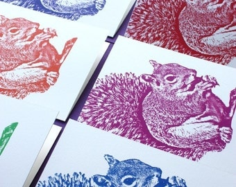 Feeling Squirrely - Bright and Cheery Note Cards