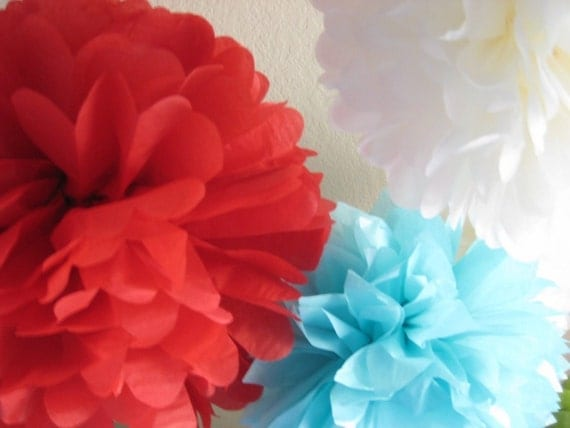 Circus Fever 7 Tissue Paper Pom Poms - 4th of July BBQ Tree Decor - Picnic in the Park - Patriotic