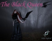 The Black Queen perfume oil - 5ml - Brittle, aged ebony, frankincense, oudh, black coffee, ginger, rose, black orchid and charred grass