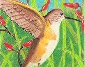 Hummingbird, Nature's Jewel, print, ACEO, bird, flying, flight, wings