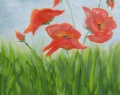 Poppies Original Oil Painting 10 X 10