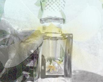 Perfume Luxury Samples eco friendly premium vegan fragrances - Choose 2