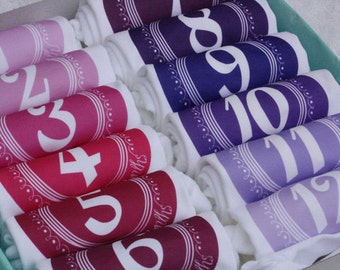 Pinks and Purples - Set of 12 Monthiversaries