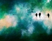 Birds on a wire - original oil painting ,large,  57x19 inch