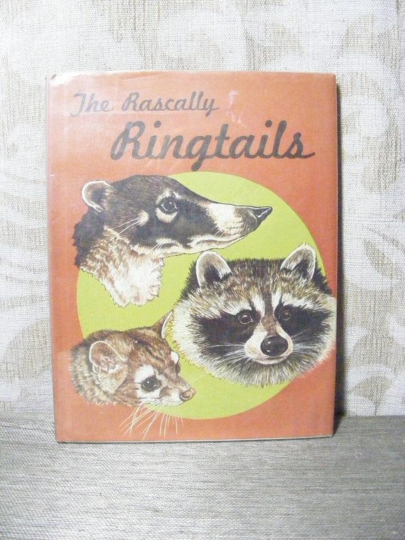 Vintage 70s Childrens Science Book THE RASCALLY RINGTAILS Raccoon Coati, Cacomistle, Animals, Illustrated
