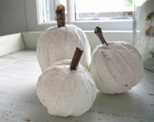STOREWIDE SALE A Trio of Pumpkins