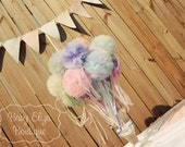 Tutu pom pom wand choose your colors