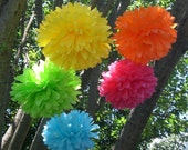 5 Hanging Poms Plus 3 Free Flowers   ...Choose Your Colors....