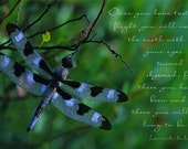 Dreams of flight dragonfly photo note card