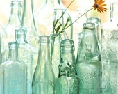 Glass Reflections- daisy flowers in old antique bottles garden style fine art photo