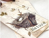 DIY Gift Tags to print and make , bird nest digital sheet,samples shown