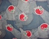 Denim Look with Apples I Like You Cotton Fabric by PPS. Inc. 26 x 45