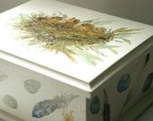 Painted Cottage Furniture Wooden Storage Keepsake Box Bird Nest Feather