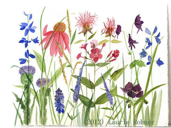 Watercolor Painting Natural History Illustration of Garden Flowers