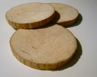 3 Sycamore Tree Branch Slices 2 inch