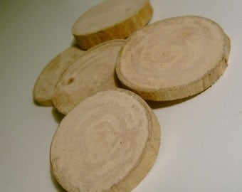 10 Sycamore tree Branch Slices 1.5 inch