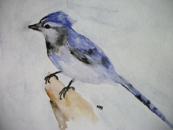 Blue Jay Watercolor Bird Print by Gina at Rustysecrets