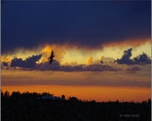 Stormy Summer Eve - Stormy Sky Photo - Nature Photography - Weather -  Sky Photo - Clouds Photo