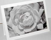 Black and White Rose Up Close - Photograph Blank Note Card