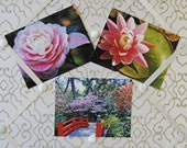 Garden Postcard Set- Six Postcard Set-Fine Art Photography