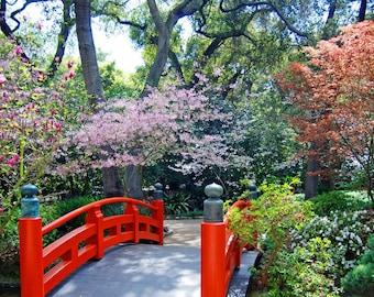Japanese Tea Garden-Japanese Garden-Descanso Gardens-Fine Art Photography-Wall Art