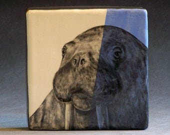 Hand Painted Walrus Portrait Wall Tile Baby Blue