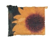 Sunflower, Polaroid Transfer Reprint, 5x7