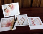 Spring Whispers, Box Set of 12 Blank Greeting Cards
