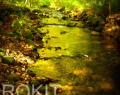 The Stream - Matted 5 x 7 Photograph Print