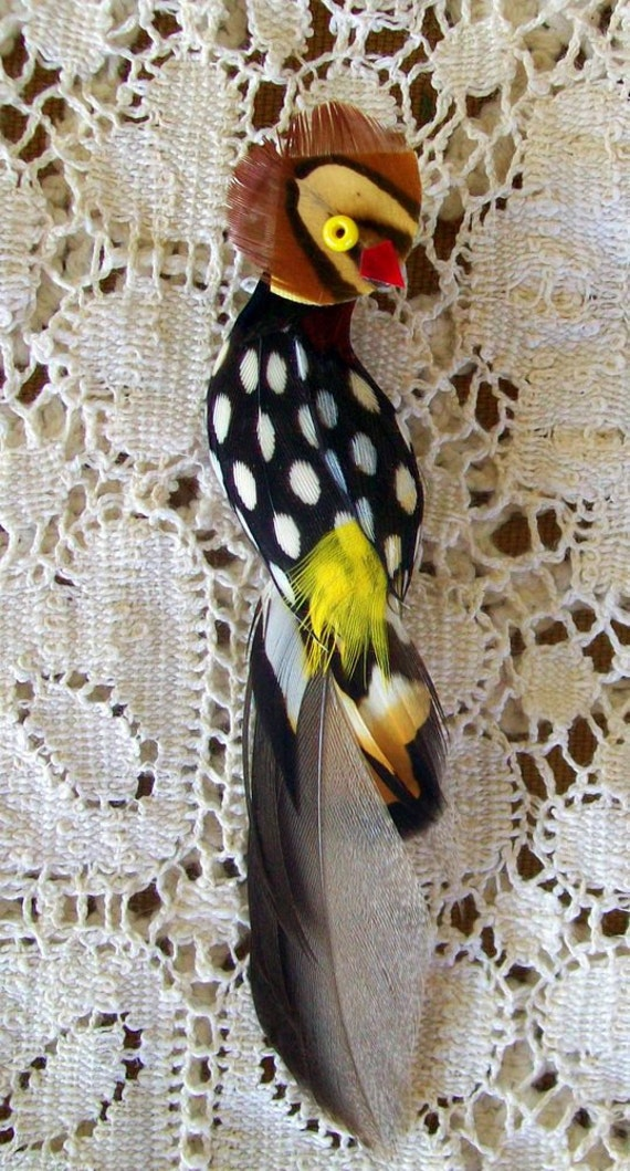 Vintage Real Feather Exotic Bird Brooch