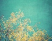 Vibrant Treetop Fine Art Photograph - turquoise teal yellow green tree nature abstract summer home decor print