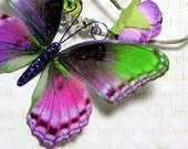 Butterfly Embellishments Bewitched