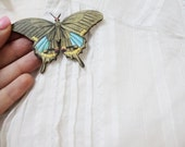 butterfly series yellow and turquoise butterfly brooch