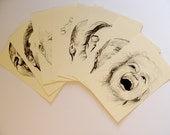 Postcard Set - Confusion About the Open Mouth