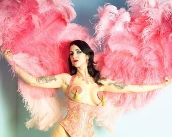 Burlesque Fans, 11x14 Photograph