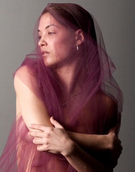 Purple Gauze, 11x14 Photo