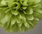 Pistachio Tissue Paper Pom .. Wedding Reception Decor