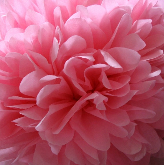 Dark pink - one pom
