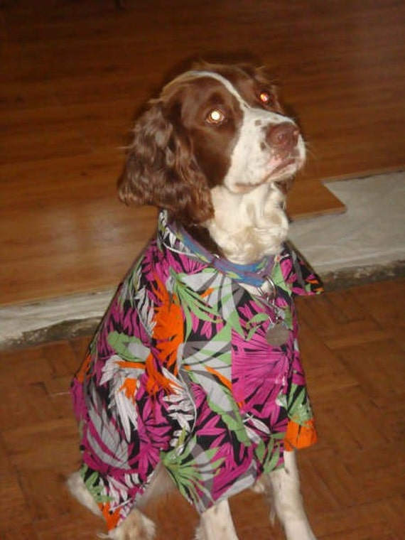 Dog's Hawaiian shirt