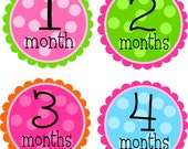 NEW...Personalized Baby Girls' Monthly Onesie Stickers- The Anna Claire Design