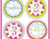 NEW...Personalized Baby Girls' Monthly Onesie Stickers- The Harper Design