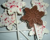 Snowflake Hot Chocolate on a Stick Candy cane