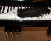 Black and White Music Feather Pen