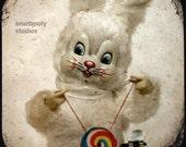 Hypnotizing Bunny