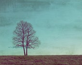 All I wanna do is grow old with you - Two trees grow old together Valentines Day gift for your lover Just two of us Fine Art Print 11x14