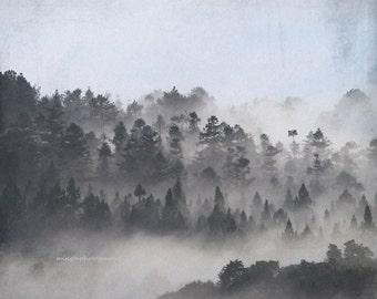 Foggy Dales - Foggy Veils nursery cabin forest mountain climbing summer house beach house wall decor color photography home deco